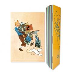 Poster Tintin e os álbuns (60x40cm)