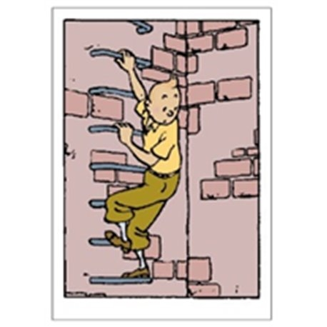 Double Card Tintin Climbs