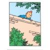 Postal duplo Tintin sobre o muro