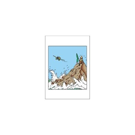 Double Card Tintin island plane