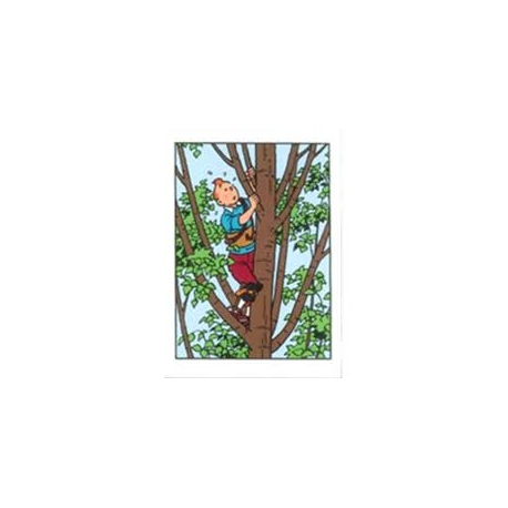 Postal duplo Tintin na Àrvore