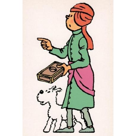 Tintin fakir postcard