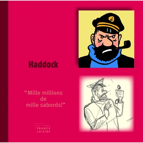 Livre personnage Haddock