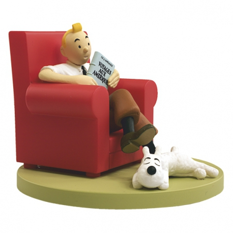Tintin at home