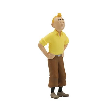 Figura 7 - Tintin Pé de Caranguejo