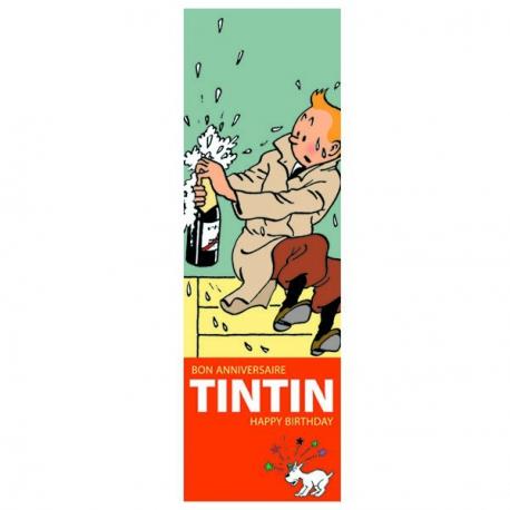 Tintin birthday calendar