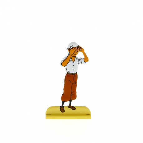 Tintin regarde le désert